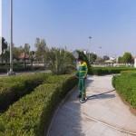 حفظ و نگهداری فضای سبز